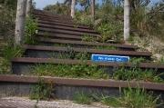Hans Geerarts - Natuurgebied Zuid Kennemerland 2